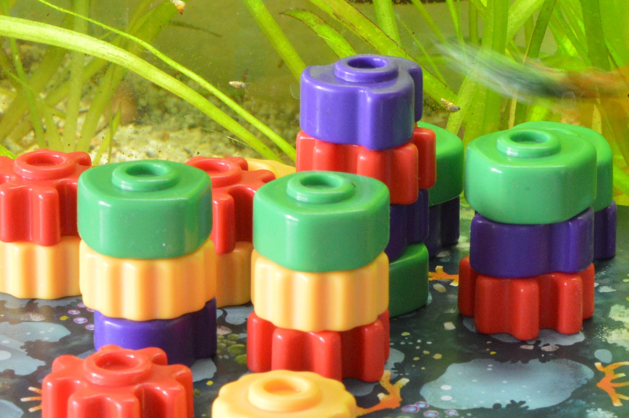 Reef-Spielsteine
